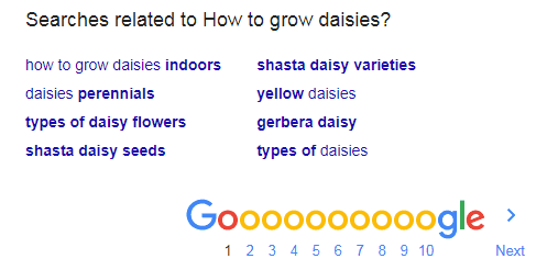 Searches related to how to grow daisies